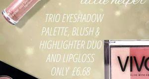 Vivo Trio make up
