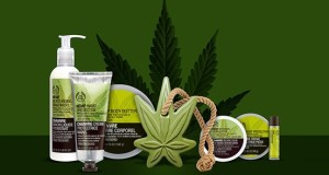 body shop canapa