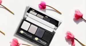 palette Grey Eyeshadow